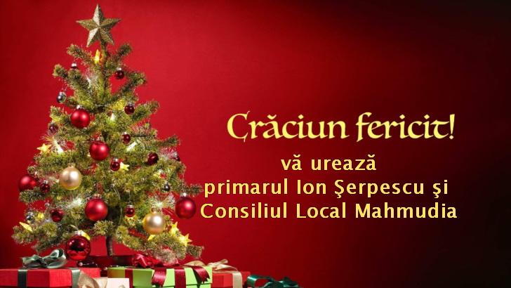 Consiliul Local şi PrimăriaMahmudia vă urează Sărbători fericite!