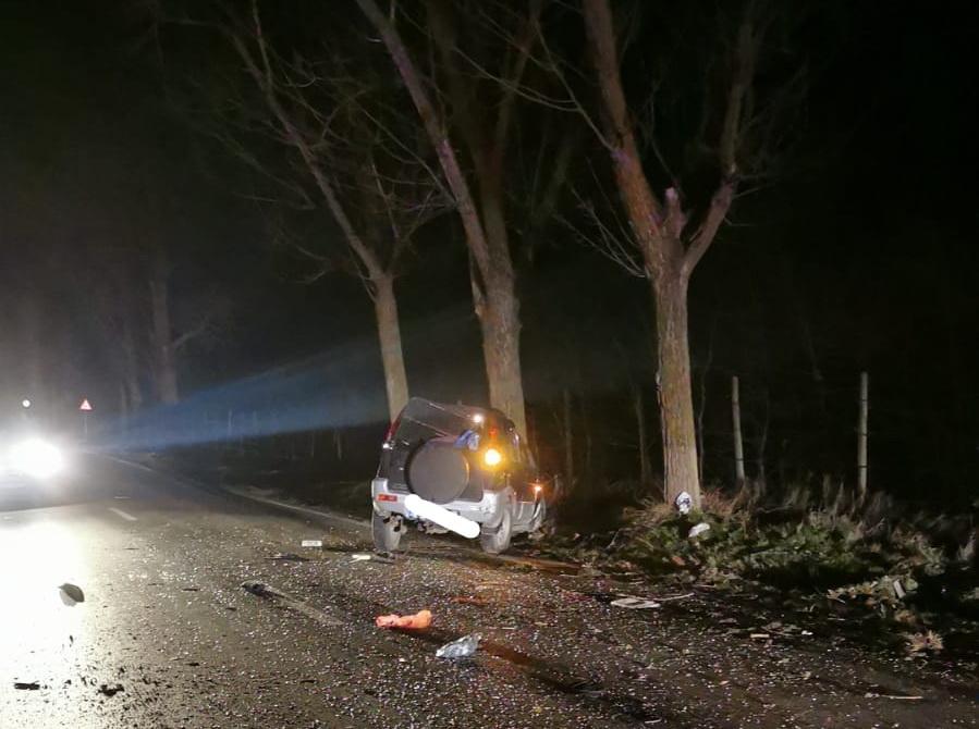 Încă un rănit pe drumul Agighiolului. Mașina s-a oprit într-un copac